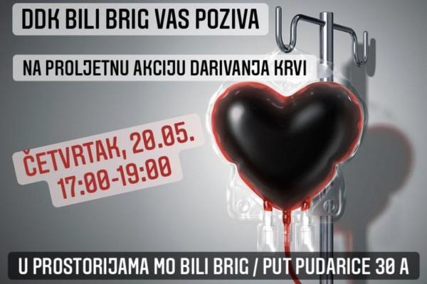 Darivanje krvi na Bilom Brigu